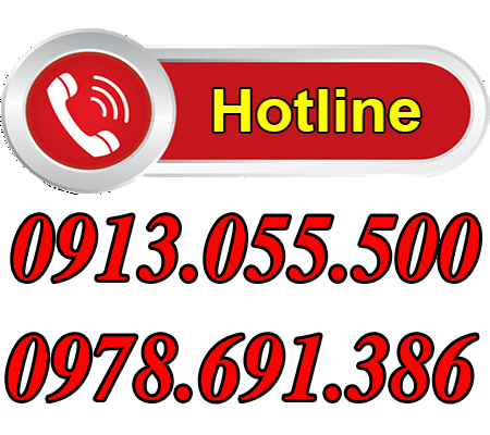Hotline ichivietnam